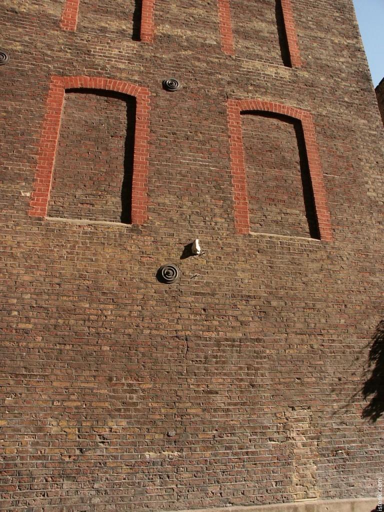 Нос на стене