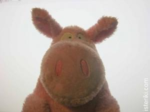 Boynton pig