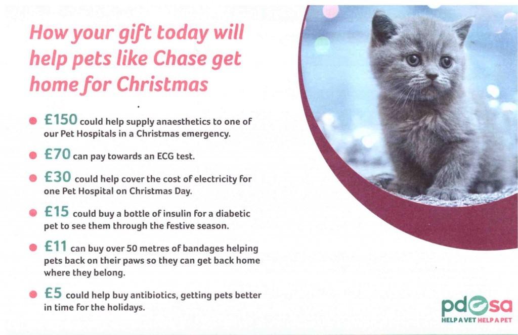 PDSA Christmas appeal